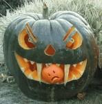 funny-halloween-special-pumpkin